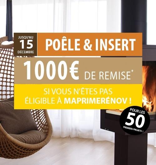 Profitez de 1000 € de remise* sur votre projet  poêle & insert !