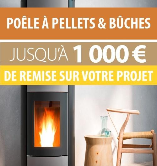 Jusqu'à 1000 € de remise sur votre projet poêle à bois ou poêle à pellets