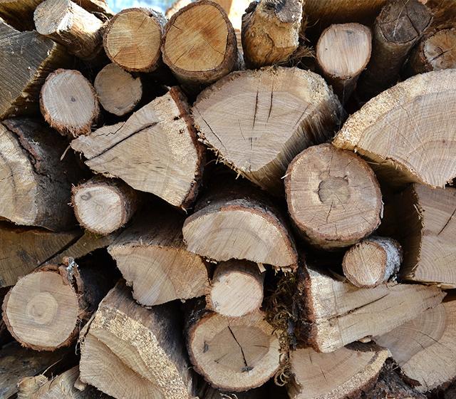 bois de chauffage adapté