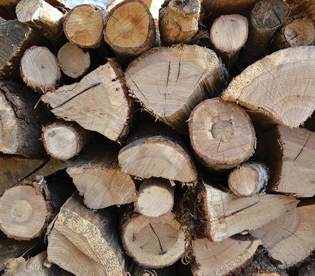 Utilisez un bois sec pour une meilleure combustion